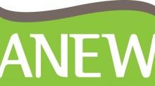 ANEW_Logo